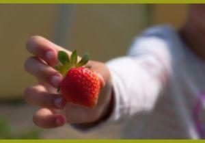 Мальчик протягивает ягоду
