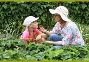 Мама кормит ягодами дочку