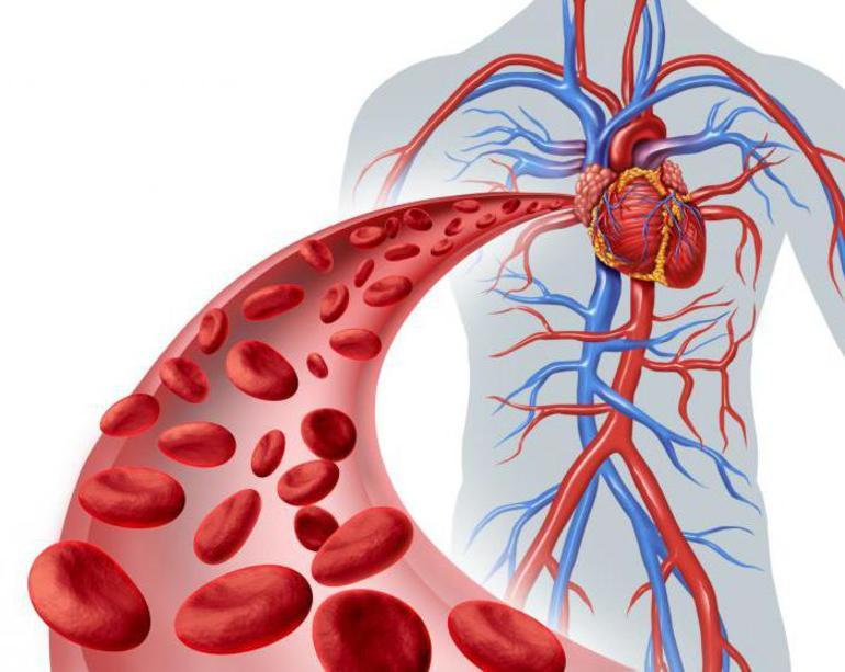 Нарушения кровообращения