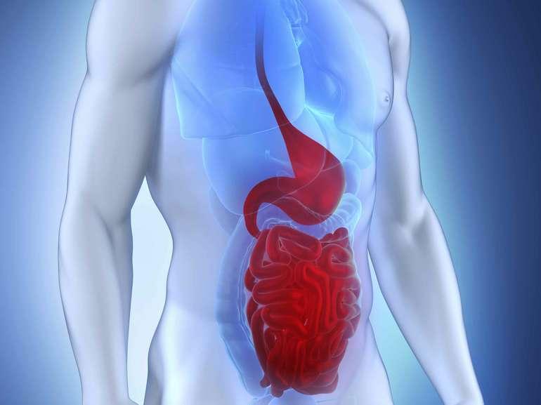 Кровотечение в желудочно-кишечном тракте