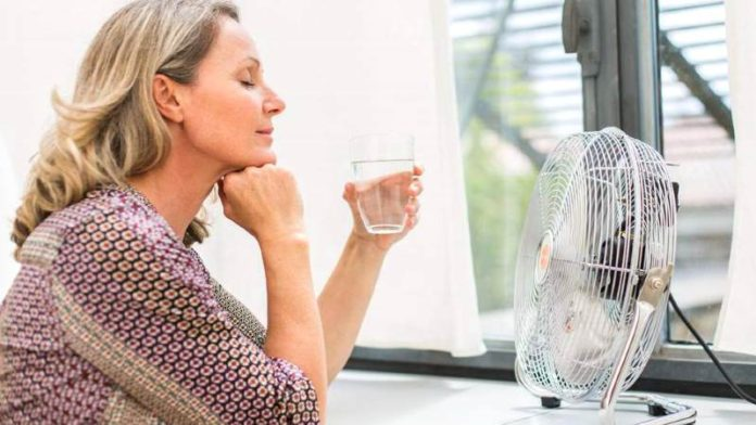 Что пить при климаксе, когда бросает в жар: лекарства, народные средства