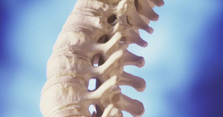 Воспаления в хрящевых тканях позвонков