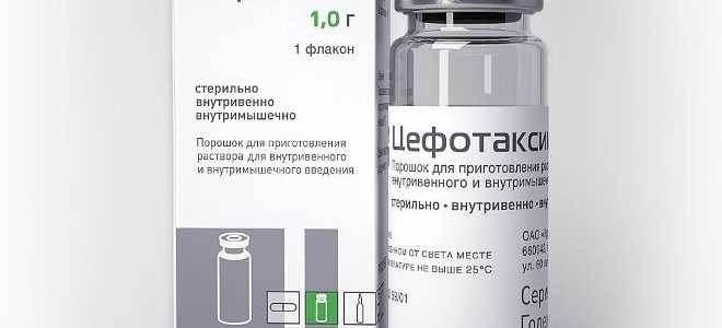 Инструкция по применению препарата Цефотаксим